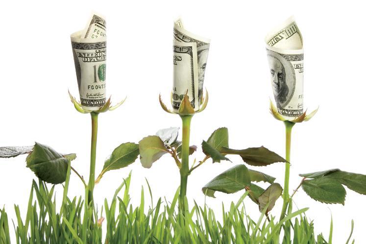 Transición hacia economía verde es posible invirtiendo 2% del PIB hasta 2050