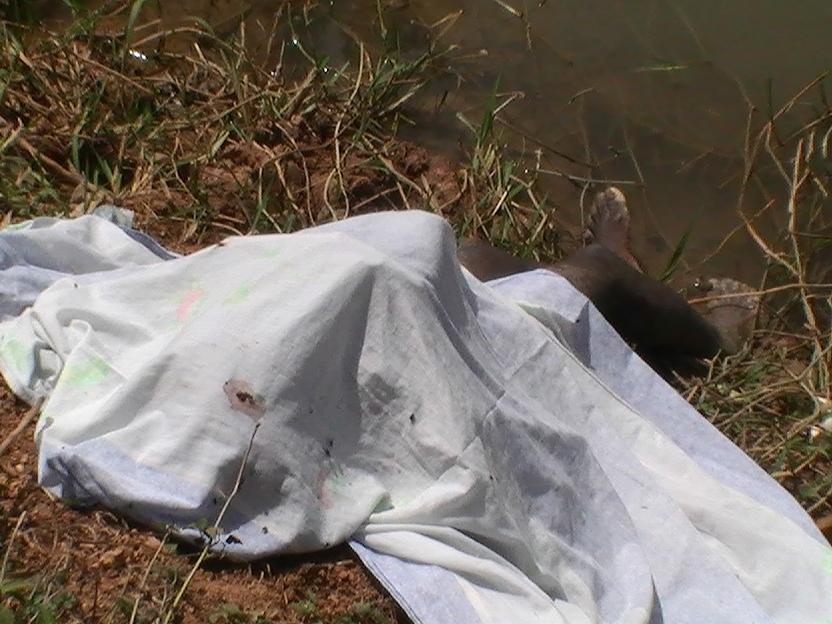 Hallan en canal de riego cadáver de haitiano con block atado al cuello