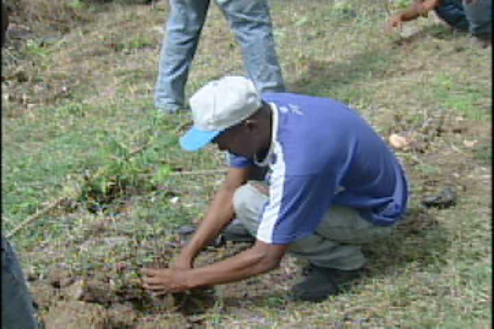 Cancelan empleado de Medio Ambiente dueño de terreno usado como área verde