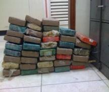 DNCD decomisa 40 paquetes de cocaína en el Puerto Multimodal Caucedo