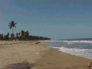 COE emite alerta verde a partir de este domingo en costa Atlántica