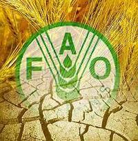 Evo Morales y el director electo de la FAO analizan crisis alimentaria