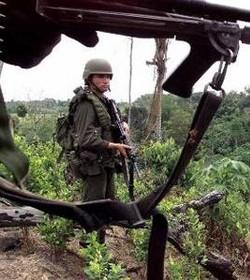Colombia y EE.UU. detienen a 36 narcotraficantes y decomisan 21 aeronaves