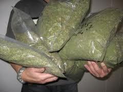 Apresan sargento PN con supuestamente 8 libras de marihuana