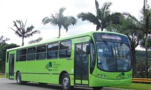Encuentran al menos 8 autobuses de la OMSA en un solar baldío