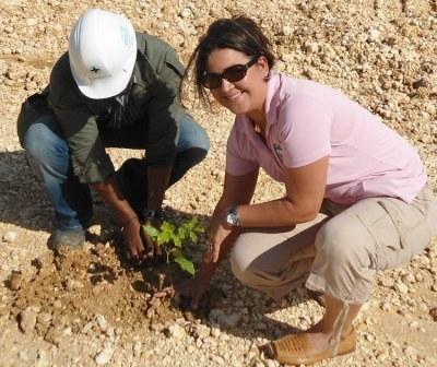 Odebrecht y Fundación Mir siembran 6 mil árboles