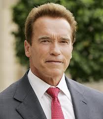 Schwarzenegger visita Güssing, pueblo austríaco modelo en energías renovables