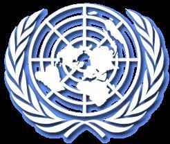 ONU denuncia el