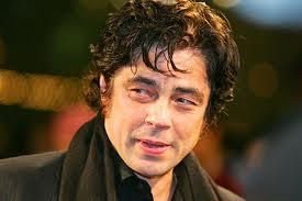 Benicio Del Toro afirma