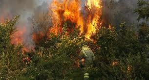 Un total de 19 incendios simultáneos azotan Quito