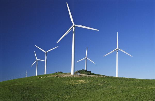 RD compra energía eólica a empresas privadas, según informó Celso Marranzini