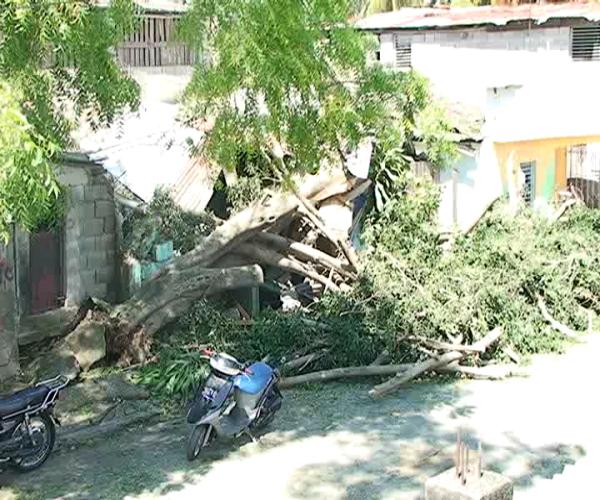 Personas afectadas por ventarrón en Santiago recibirán ayuda esta tarde