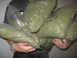 Colorado, primer estado de EE.UU. en regular la marihuana