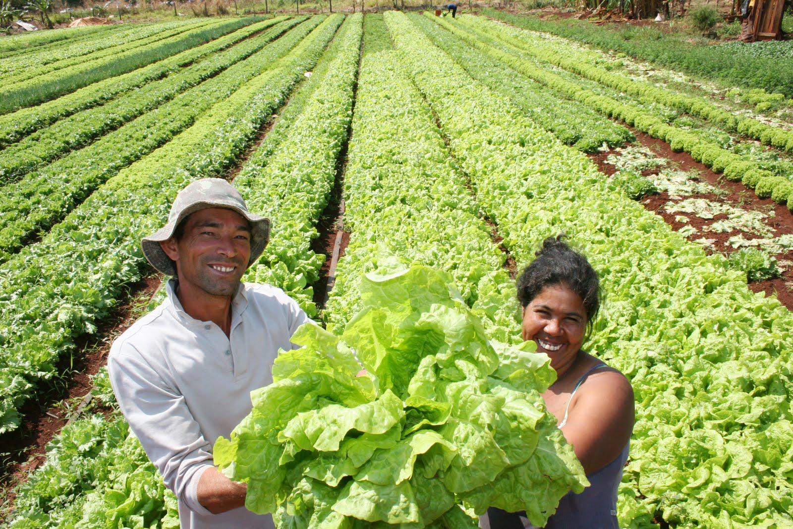 Presidente Medina felicita a los agricultores en su día