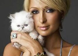 Paris Hilton reclama un millón de dólares a empresa de zapatos