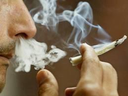 Proyecto para despenalizar consumo de marihuana levanta polémica en PR