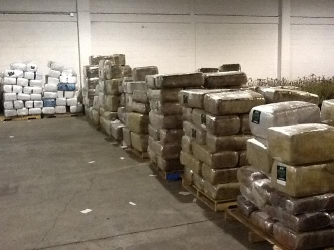 Incautan más de 12 toneladas de marihuana en Colombia
