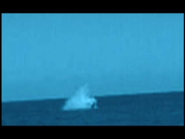 ¡Horror en el Malecón! Serias interrogantes en accidente de avioneta