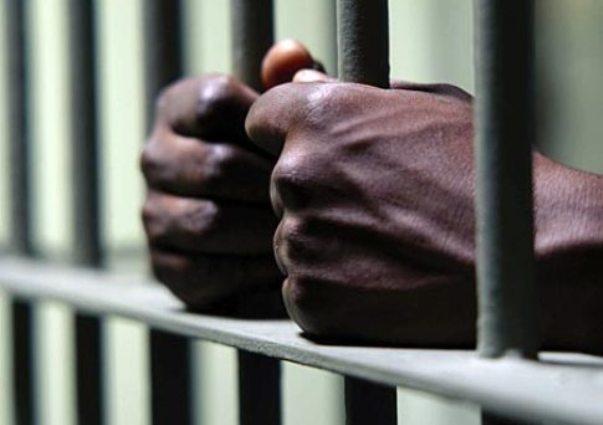 Arrestan nacional haitiano por supuesto robo de vehículos