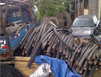 Apresan supuestos ladrones de alambres en Hato Nuevo, SDO y el DN