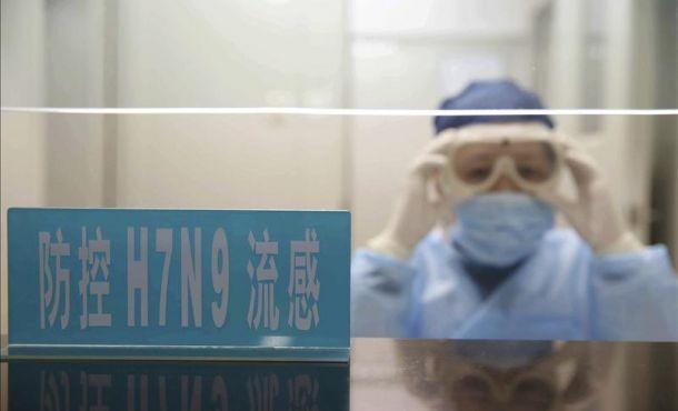 Expertos OMS investigan en China brote de nueva cepa de gripe aviar