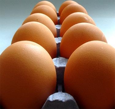 Productores de huevos apoyan medidas para exportar