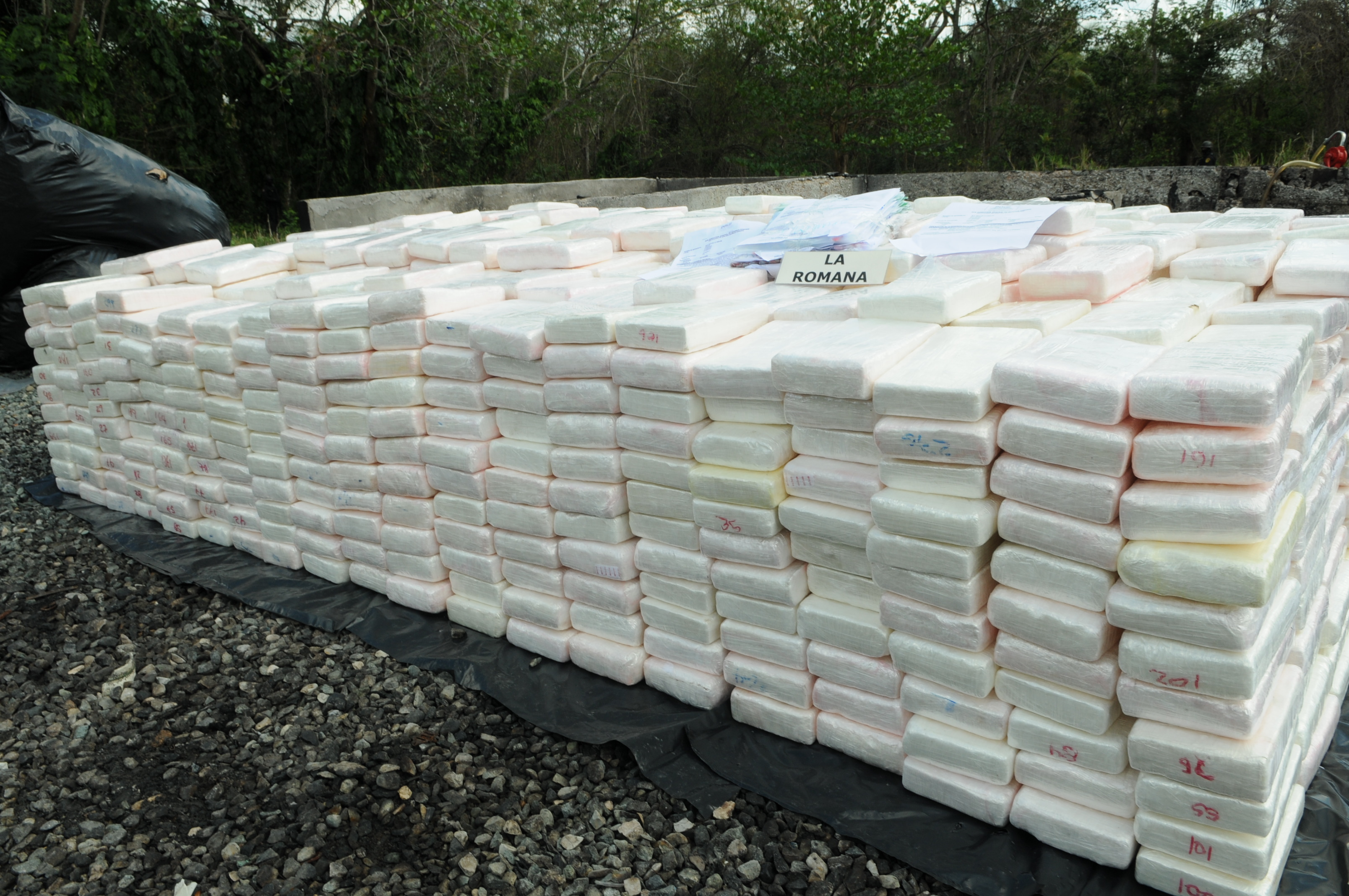 DNCD habría incautado más de 6 toneladas de cocaína en 4 meses