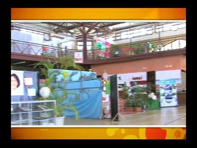 Colegio Santa Teresa celebra su Feria Artística y Cultural