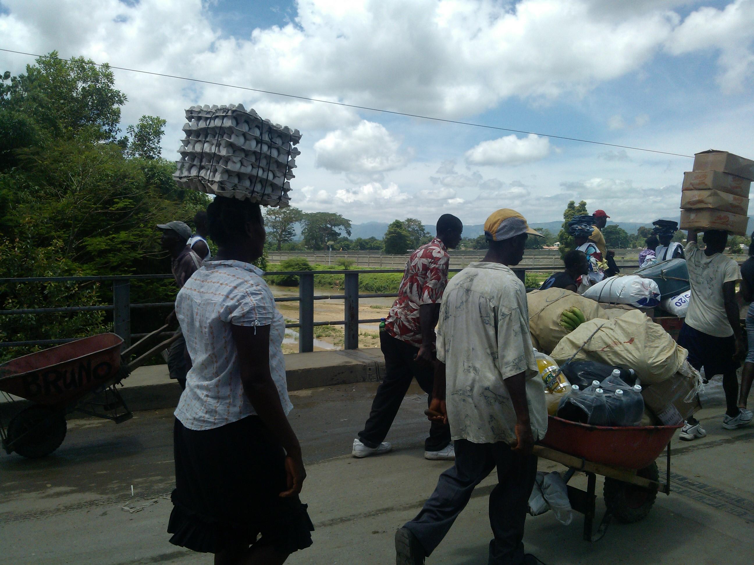 Piden levantar impedimento venta de huevos a Haití; dicen AH1N1 no viene de aves