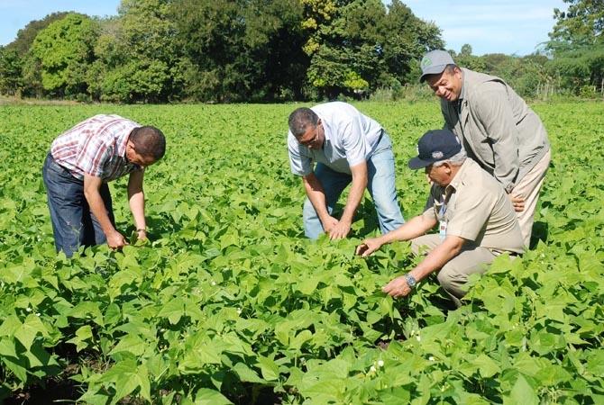 Ministro de Agricultura dice trabaja para transformar el campo