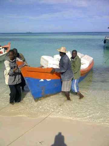 Armada detiene 10 nacionales haitianos pescando de manera ilegal