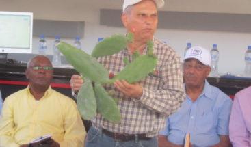 Desarrollarán  modelo ganadero para prevenir y paliar sequía