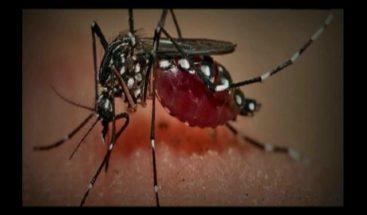 EE.UU enviará experto a Puerto Rico a estudiar evolución del chikungunya