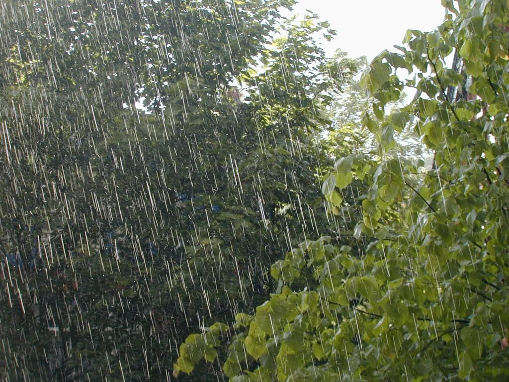 Viento del Este provocará lluvias en varias provincias del país