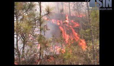 Medina supervisa trabajos para controlar el fuego en Constanza