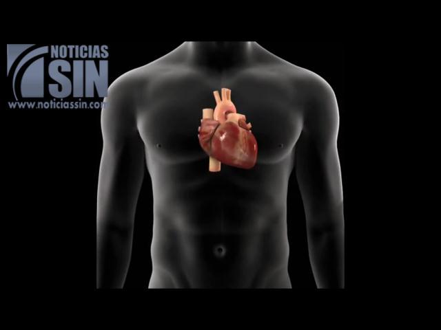Día Mundial del Corazón: problemas cardiovasculares cobran millones de vidas al año