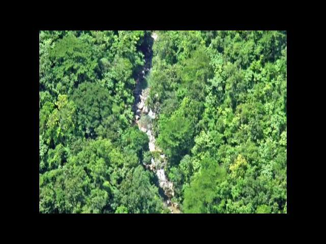 Falcondo reitera su rechazo a Ley convierte Loma Miranda en Parque Nacional