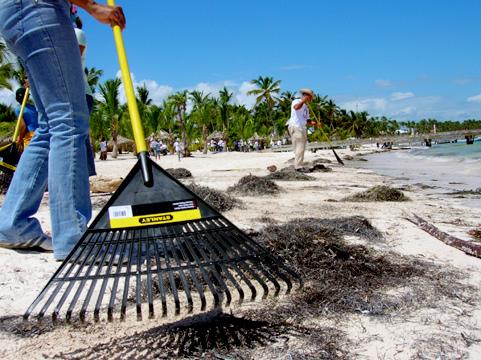 Inician hoy Jornada Limpieza de Costas con más de 20 mil voluntarios