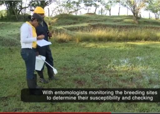 Videos: OMS premia proyectos de RD, Guatemala y Honduras por logros en control de la malaria