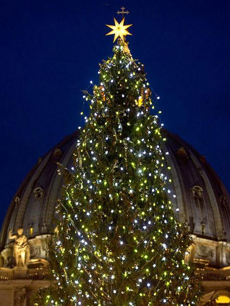 Vaticano inaugura belén, árbol de Navidad e iluminación en Plaza de San Pedro