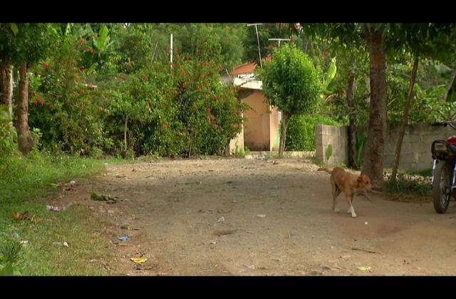 Residentes en La Cuchilla de Villa Altagracia desesperados por mal estado de sus calles