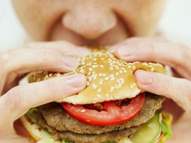 Los ácidos grasos afectan las actividades del cerebro