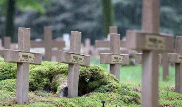 Delincuentes roban y destruyen en cementerio de La Vega