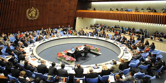 El ébola, tema central de la asamblea anual de la OMS