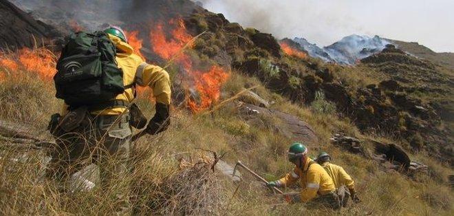 Medio Ambiente sospecha podría haber manos criminales en incendios forestales