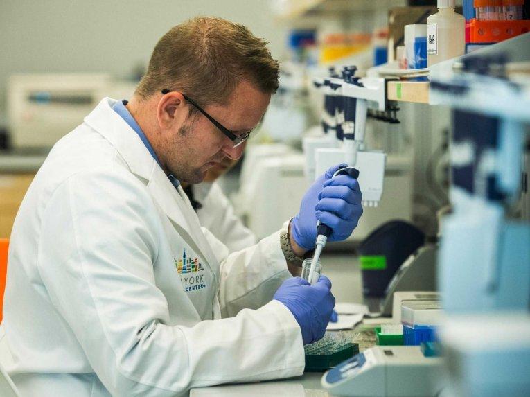 Una modificación del virus del herpes destruye las células del cáncer de piel