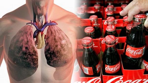 Conozca el efecto de la Coca Cola en su cuerpo