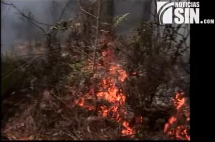 A la justicia en las próximas horas sospechosos de provocar incendios forestales