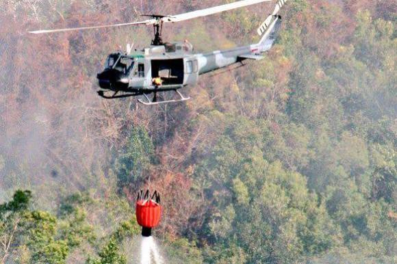 Incendios forestales han sido extinguidos en su totalidad, según Rojas Gómez