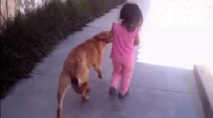 Mascota cuida a niña de cuatro años estaba desaparecida